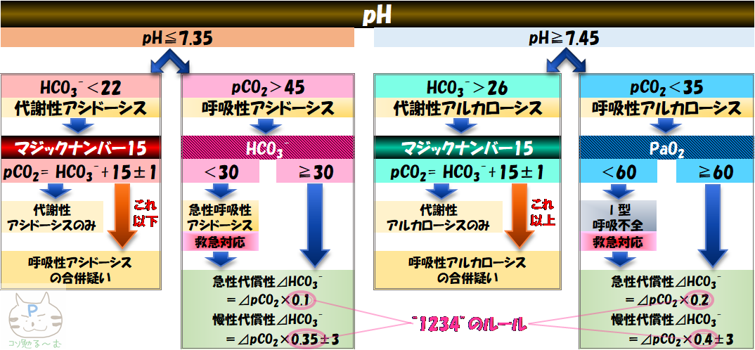 血ガス 酸塩基平衡 分類